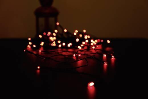 Micro-Lichterkette Außen netzbetrieben 80 LED Rot Beleuchtete Länge: 12.64 m Polarlite PLC-03-002