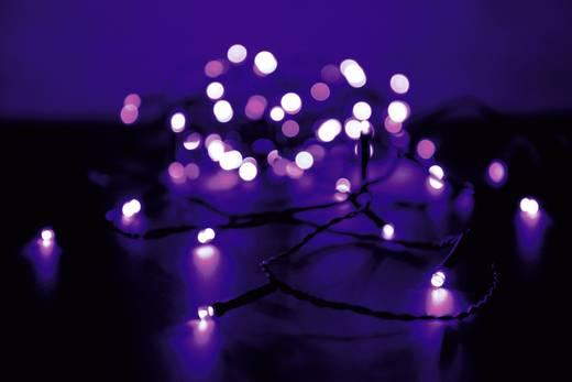 Micro-Lichterkette Außen netzbetrieben 80 LED Lila Beleuchtete Länge: 12.64 m Polarlite PLC-03-003