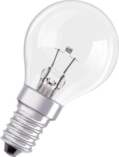 OSRAM 8100 5A E14 FS1 Leuchtmittel online kaufen