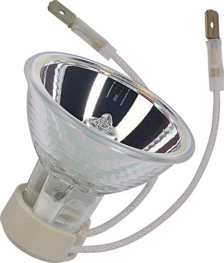 OSRAM SIG64004 CL 50W 10V K23D FS1 Leuchtmittel online kaufen