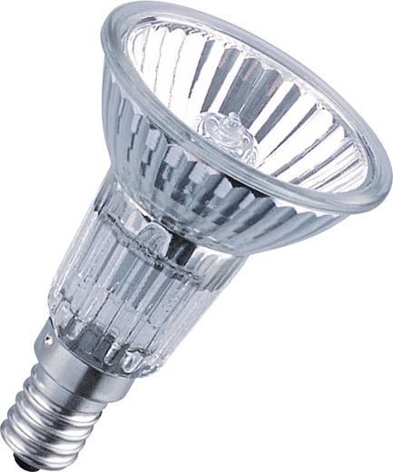 OSRAM 64822FL 40W 230V E14 FS1 Leuchtmittel online kaufen