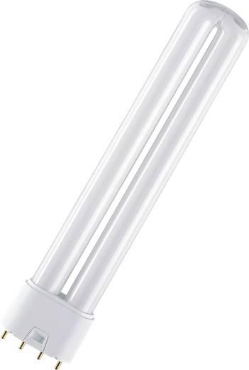 Energiesparlampe 309 mm OSRAM 2G11 24 W Warmweiß EEK: A Röhrenform 1 St.