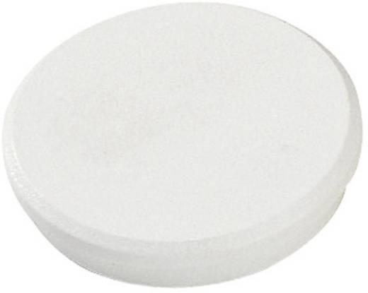 Haftmagnet weiß 32 mm