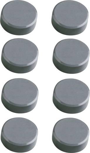 Maul Facetterand-Magnet 8 St. Grau (Ø x H) 15 mm x 7 mm 6175284