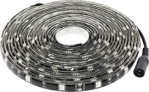 LED-Streifen-Komplettset mit Stecker 12 V 500 cm Schwarzlicht Müller Licht LED-strip blacklight 57017