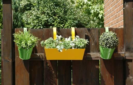 Blumentöpfe am Gartentor - so sollen sie wieder blühen