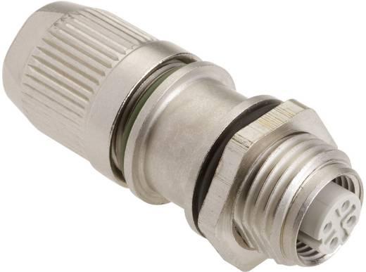 Sensor-/Aktor-Steckverbinder, unkonfektioniert M12 Buchse, gerade Polzahl (RJ): 4 Harting 21 03 381 2425 HARAX® M12-L 1