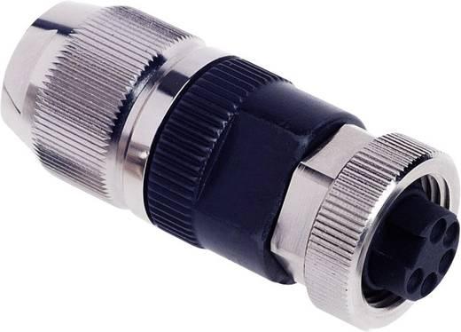 """Rundsteckverbinder 7/8"""" mit Schnellanschluss HARAX Pole: 5 HARAX® 7/8"""" Harting Inhalt: 1 St."""