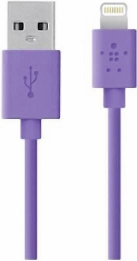 Belkin iPad/iPhone/iPod Datenkabel/Ladekabel [1x USB 2.0 Stecker A - 1x Apple Lightning-Stecker] 1.2 m Lila