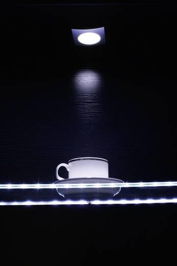 Rolux LED-Lichtleiste mit Stecker 12 V 30 cm Neutral-Weiß DF-7012-12 ...