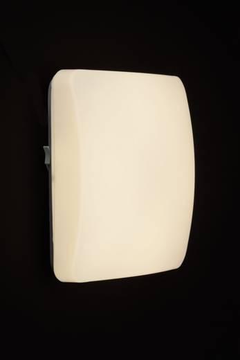 LED-Deckenleuchte 12 W Warm-Weiß Brilliant Vigor G94158/05 Weiß