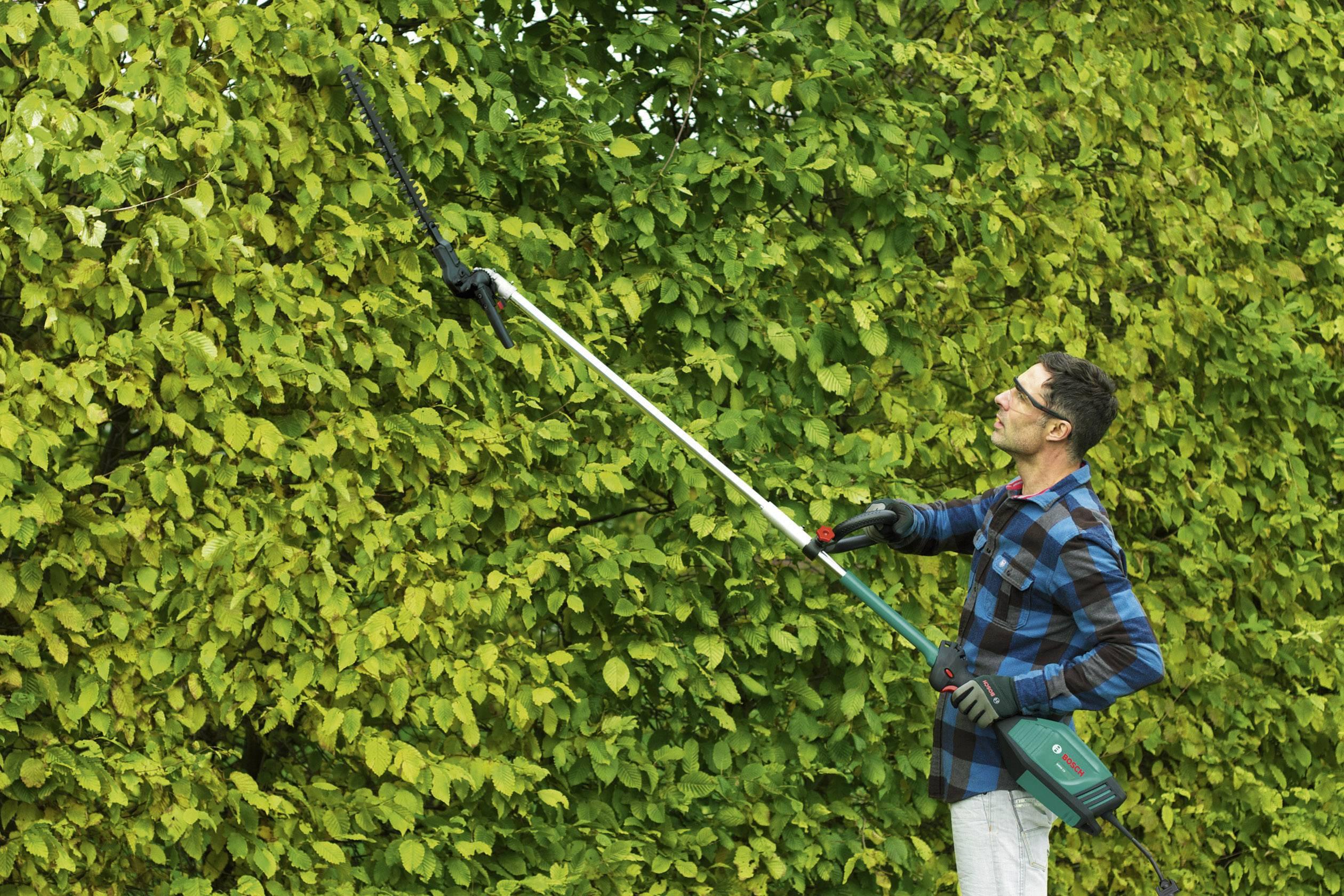 Elektro heckenscheren vorsatz bosch home and garden amw hs kaufen