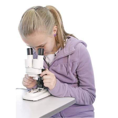 Kindermikroskope für den Einstieg ins Mikroskopieren