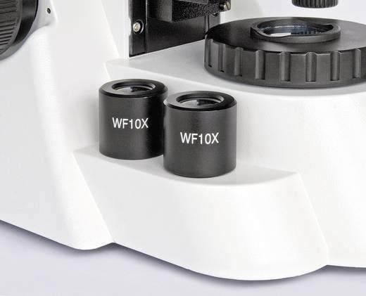 Durchlichtmikroskop Trinokular 1000 x Bresser Optik BioScience Trino 40x-1000x Auflicht