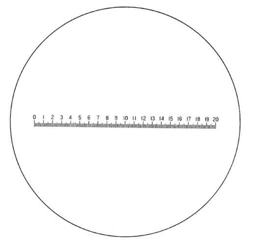 Präzisionsskala Linsengröße: (Ø) 23 mm Eschenbach