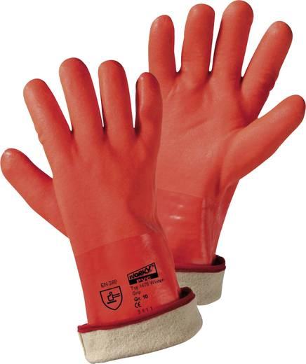 PVC Arbeitshandschuh Größe (Handschuhe): Universalgröße EN 388 CAT II L+D Griffy WINTER-GRIP 1475 1 Paar