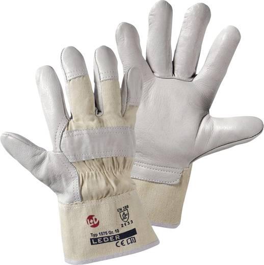 Rindnarbenleder Arbeitshandschuh Größe (Handschuhe): 10, XL EN 388 CAT II worky Basalt 1575 1 Paar