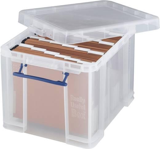Kunststoffbox (L x B x H) 395 x 255 x 240 mm Transparent 1 St.
