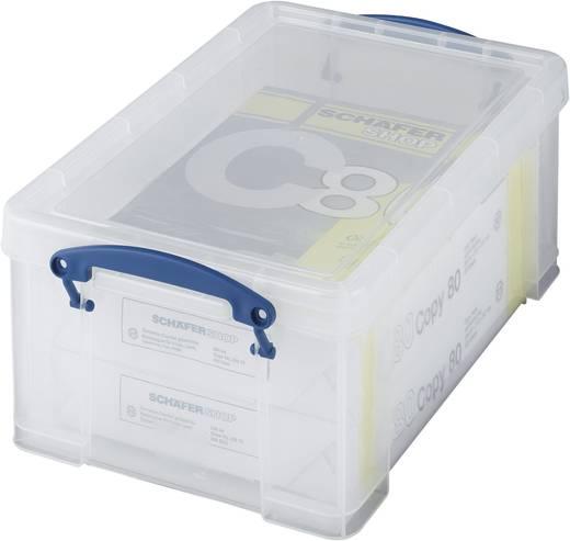 Kunststoffbox (L x B x H) 395 x 255 x 155 mm Transparent 1 St.