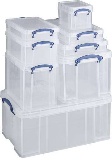 Kunststoffbox (L x B x H) 395 x 255 x 85 mm Transparent 1 St.