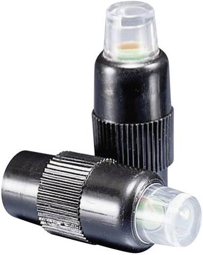 BAAS BA02 Reifendruckverlustanzeige inkl. 2 Sensoren