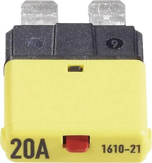 Sicherungsautomat Standard Flachsicherung 20 A Gelb 1610 CE1610-21-20A 1 St.