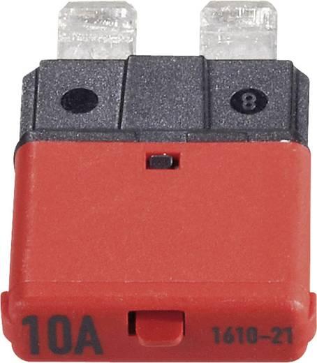Sicherungsautomat Standard Flachsicherung 10 A Rot 1610 CE1610-21-10A 1 St.