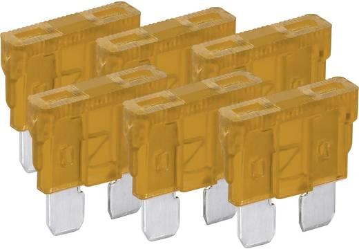 Standard Flachsicherung 5 A Beige FixPoint 20380 6 St.