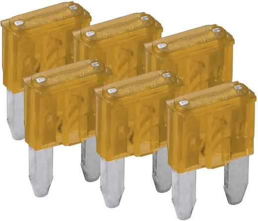 Mini-Flachsicherung 6er Pack FixPoint SORTIMENT 1027-5A KFZM-Sicherung 6 tlg. 20387
