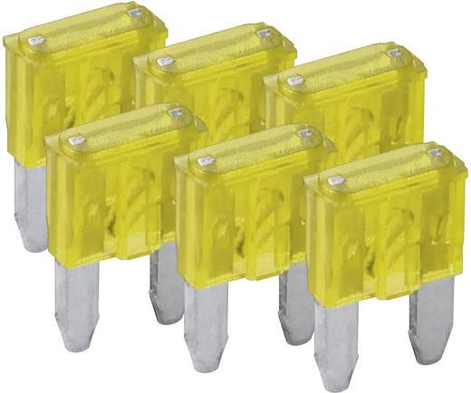 Mini Flachsicherung 20 A Gelb FixPoint SORTIMENT 1027-20A KFZM-Sicherung 6 tlg. 20391 6 St.