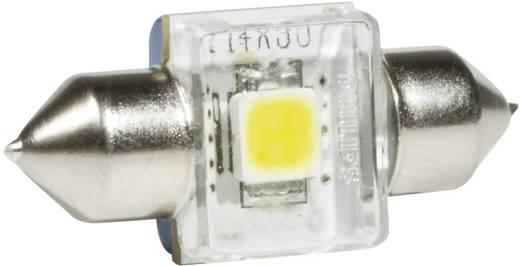 Innenraum LED Soffitten Leuchtmittel Philips X-tremeVision C5W 1 W 6000 K (L x B x H) 30 x 14 x 9.5 mm