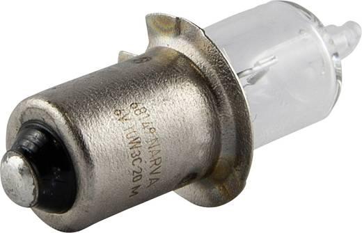 IVT Ersatzlampe 300111 Passend für: IVT Handscheinwerfer Profi, IVT Handscheinwerfer Profi Plus