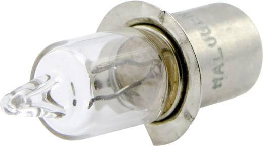 IVT Ersatzlampe 300117 Passend für: IVT Handscheinwerfer Explorer II