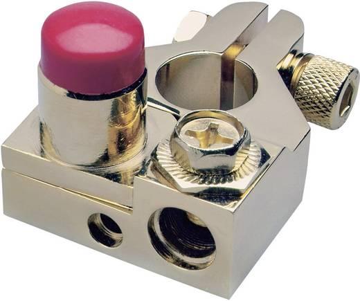Sinuslive 13418 BKS + Batteriepolklemme Pluspol vergoldet 1 St.