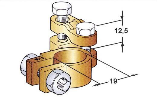 Batterie-Polklemme Abgewinkelt/Plus (B x H x T) 48 x 20 x 58 mm