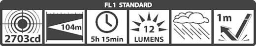 Krypton Taschenlampe Mag-Lite Mini 2 AA batteriebetrieben 107 g Schwarz