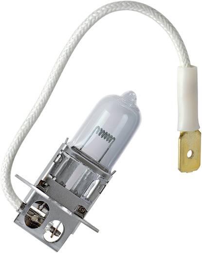 Halogen Leuchtmittel OSRAM Standard H3 70 W