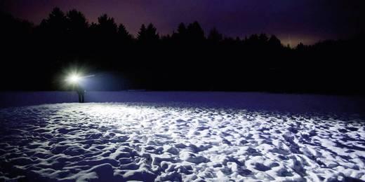 Taschenlampe Ledlenser P14.2 9614 Schwarz