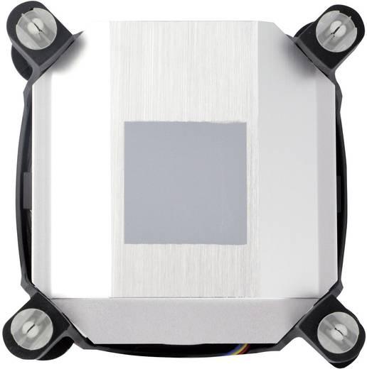 Arctic Alpine 11 GT CPU-Kühler mit Lüfter