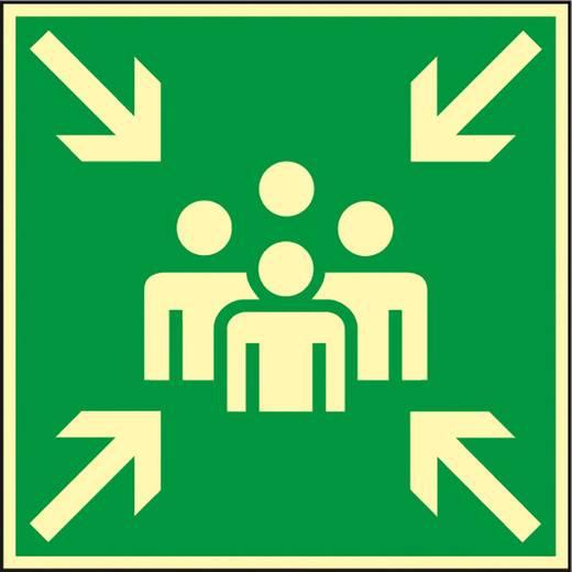 Hinweisschild (B x H) 400 mm x 400 mm 1 St.