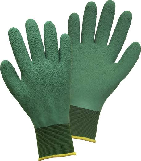 FerdyF. 1494 Garten-Handschuh Rosalind Damengröße 100% Nylon Größe 8