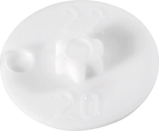 TOOLCRAFT Zierkappe für Senkschrauben mit Innensechsrund Kunststoff Torx 15 1 St.