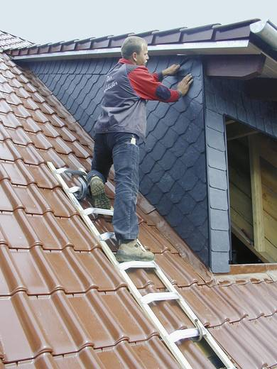 Aluminium, Holz Dachleiter Krause 804235 Silber, Hell-Braun 7.5 kg