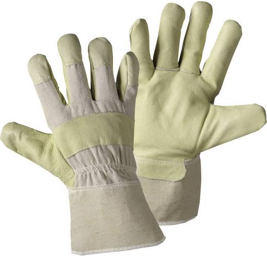 worky 1558 Schweinsnarbenleder-Handschuh Maxi-Pawa Schweinsnarbenleder und Baumwolle Größe (Handschuhe): 11.5, XXL