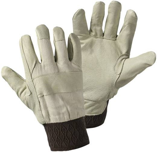 worky 1602 Schweinsnarbenleder-Winterhandschuh Schweinsnarbenleder und Baumwolle Größe (Handschuhe): Damengröße