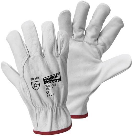 worky 1606 Fahrerhandschuh Rindnarbenleder Größe (Handschuhe): 9, L