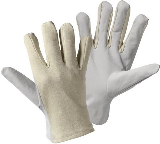 Nappaleder Arbeitshandschuh Größe (Handschuhe): 10, XL L+D worky Nappa Trikot 1705 1 Paar