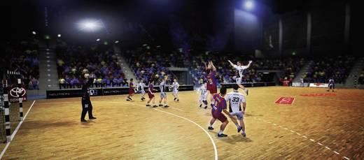 IHF Handball Challenge 12 PC USK: 0