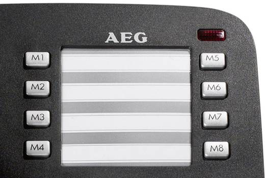 AEG VOXTEL C 100