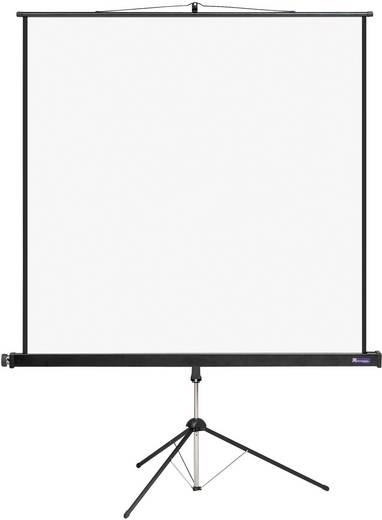 Stativleinwand Reprolux Screens Cinestativ 100216 196 x 200 cm Bildformat: 1:1